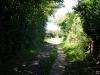 Umgebung - Wanderweg Schlei